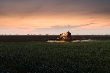 Fotomurales - Tractor spraying pesticides on wheat field with sprayer at sunset