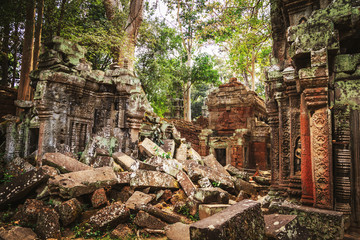 Ta Prohm temple - a symbiosis of roots and stones.