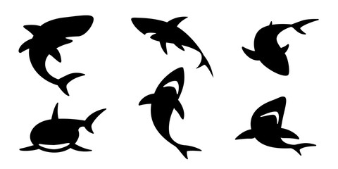 shark vector icon logo dolphin whale ocean wave illustration character cartoon graphic