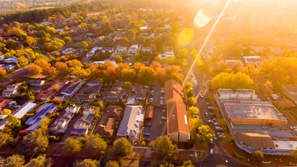 Aerial view of a green leafy suburb