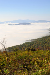 View of Shenandoah Valley covered in fog from Skyline Drive