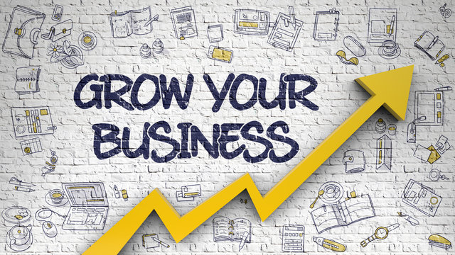 Grow Your Business Drawn on White Wall.