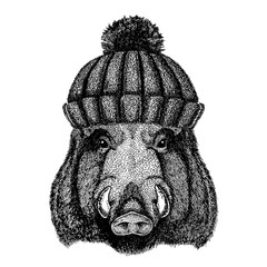 Wild hog, pig, boar, aper Cool animal wearing knitted winter hat. Warm headdress beanie Christmas cap for tattoo, t-shirt, emblem, badge, logo, patch