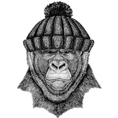 Gorilla, monkey, ape Cool animal wearing knitted winter hat. Warm headdress beanie Christmas cap for tattoo, t-shirt, emblem, badge, logo, patch