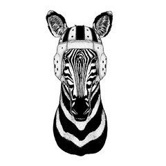 Cool animal wearing rugby helmet Extreme sport game Zebra Horse Hand drawn illustration for tattoo, emblem, badge, logo, patch