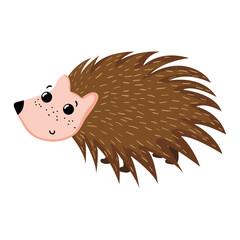 adorable porcupine wild cute animal