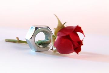 metall love