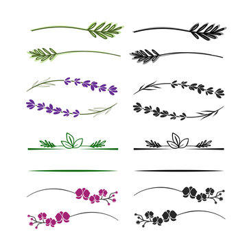 Floral branches, twigs and elements for logo. Simple branches with leafs. Can use with text.
