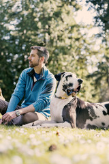 Man sitting in park with handsome harlequin great dane dog in afternoon sun