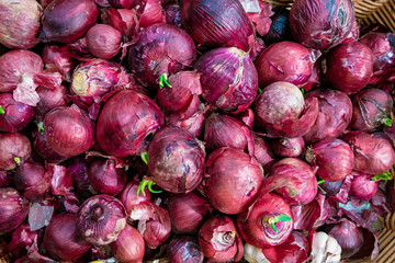 Big Red Onions Background