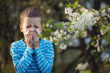 Child having allergy. Boy sitting outdoor with tissue in park near blooming flowers.