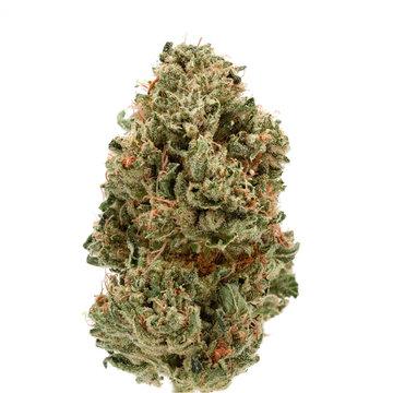 OG Kush - Medical Cannabis Weed Bud