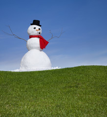 Snowman in the green grass of spring