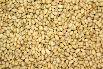 background - golden kernels of peeled pine nuts