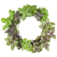 Various sweet basil herb leaves round frame. Healthy food concept. Top view with copy space.