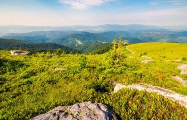 landscape of Carpathian high mountain ridge. lonely spruce tree among huge rocks on grassy hillside. gorgeous vewpoint with hills and peaks in the distance. spectacular scenery with blue sky
