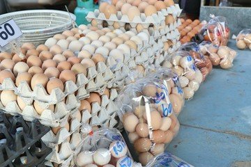 brown egg in the market