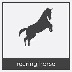 rearing horse icon isolated on white background
