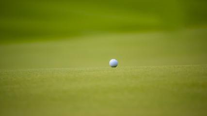 The golf ball put on green grass of golf course