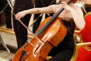 Photo of woman playing cello