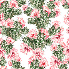Beautiful Watercolor pattern with cactus .