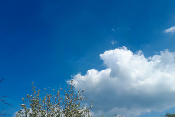 white cloud in the right part of the photo in the clear blue sky