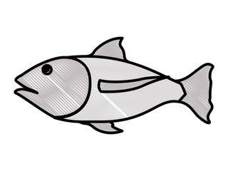 fish food isolated icon vector illustration design
