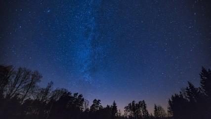 Beautiful night sky with Milky Way