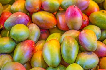 Variety of Mango Fruits Placed Bulk at the Market Storefront.