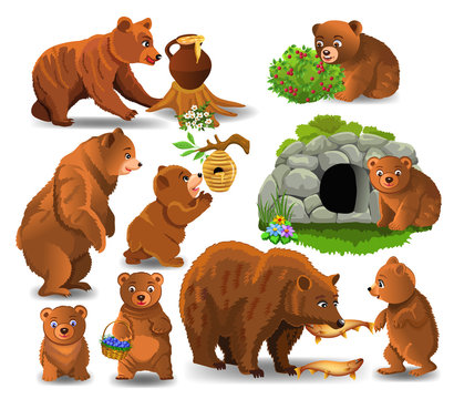 Cartoon bears doing different activities and eating their favorite food like honey, berries and fish isolated on a white background