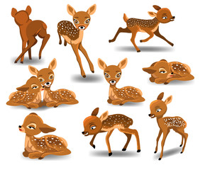 Fawn cartoon character doing different activities like running, resting, sleeping isolated on white background