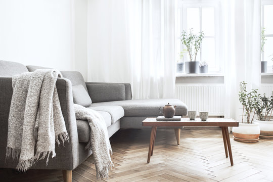 Modern interior with small designer table, sofa and plants