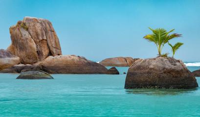 Tropischer Strand für Hintergrund mit Felsen und Palme
