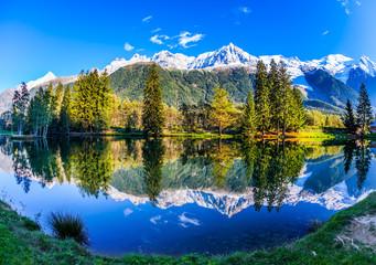 Photo sur Plexiglas Reflexion Mont Blanc reflected in the lake
