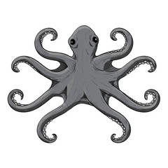 Octopus with symmetric tentacles. Gray hand drawn sketch