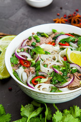 Vietnamese Beef Noodle Soup Pho Bo with beef on dark background