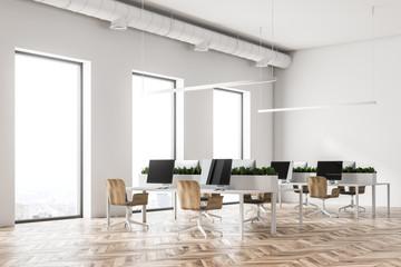 Eco style open plan office corner