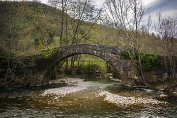 puente antiguo en el rio