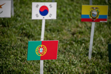 Portugal and united nations many flags on grass