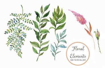 Hand drawn watercolor floral elements - leaves and flowers. Isolated on the white background, easy editable and great for floral compositions.Design for invitation, wedding or greeting cards