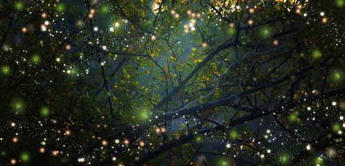 In de dag Bossen Abstract and magical image of Firefly flying in the night forest. Fairy tale concept.