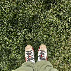 Scarpe sportive sul prato
