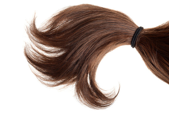 brunette hair in a ponytail isolated