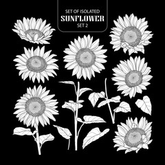 Set of isolated white silhouette sunflower set 2.
