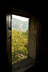 Hacienda wooden door