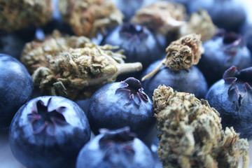 Marijuana Bud With Blueberries Macro Close Up