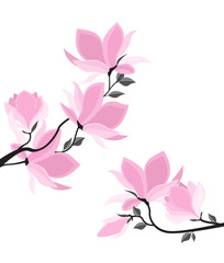 Vector illustration branches with floral decoration. Spring magnolia. Background with pink flowers