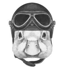 Portrait of Duck with vintage helmet, hand-drawn illustration