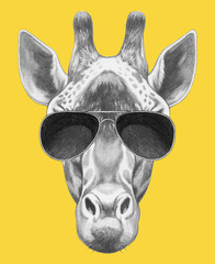 Portrait of Giraffe with sunglasses,  hand-drawn illustration