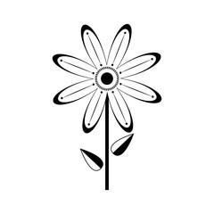 Isolated monochrome flower icon